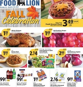foodlion_october22_2014