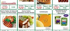 Harris Teeter Weekly Ad February 22 – February 28, 2017