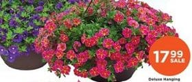 Fleet Farm Weekly Specials May 8 - May 16, 2020. Deluxe Hanging Baskets on Sale!