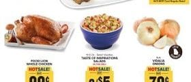 Food Lion Weekly Ad